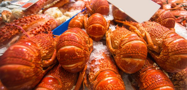 lobster on market stall