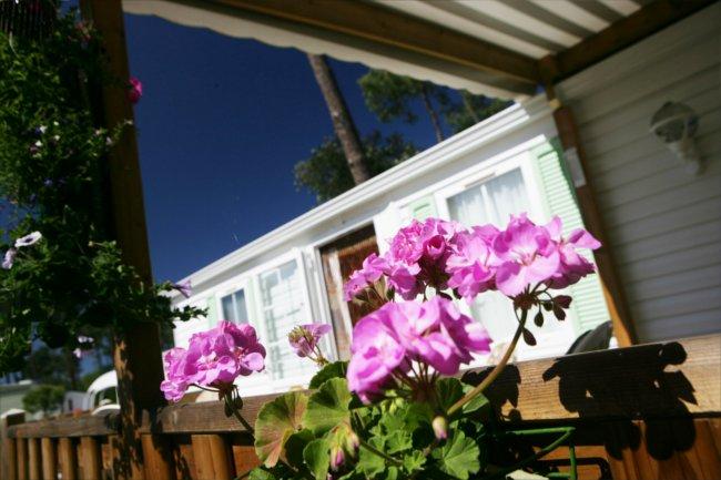 La-Pignade-home-flowers
