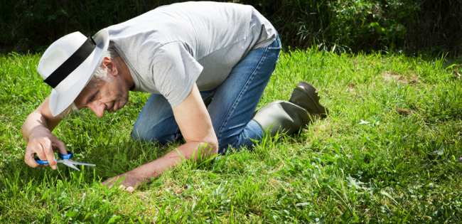 gardening causes back pain