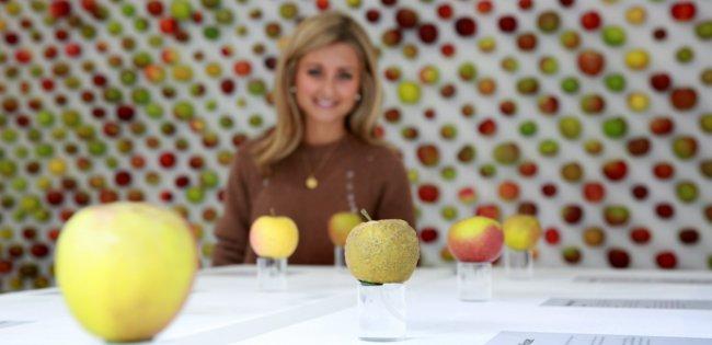 1000 varieties of apple ar Borough Market, London