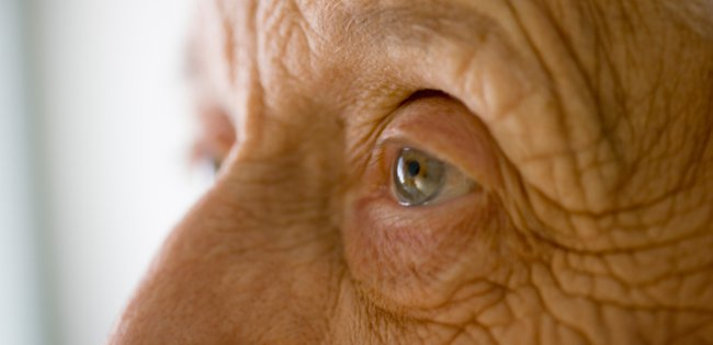 eyesight and dementia