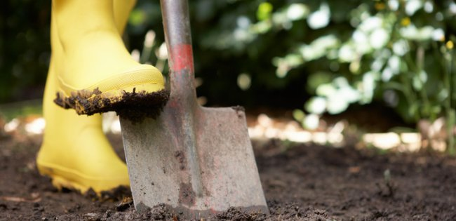 Soil conditions for gardening