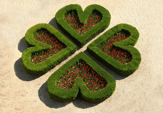 four leaf clover garden symbol