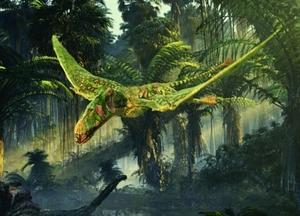 A Dimorphodon, yesterday.