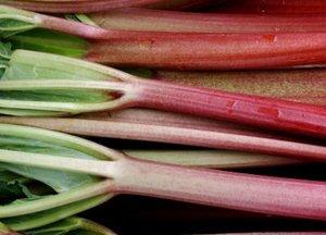 natural remedies - rhubarb