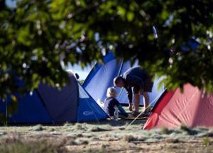Camping at Brownsea Island