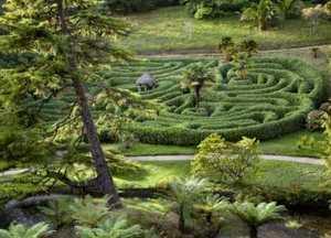 Glendurgan garden