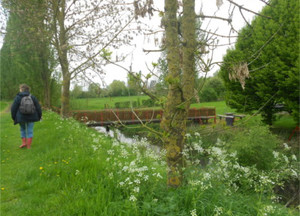 A tranquil scene on the Wilfred Owen walk