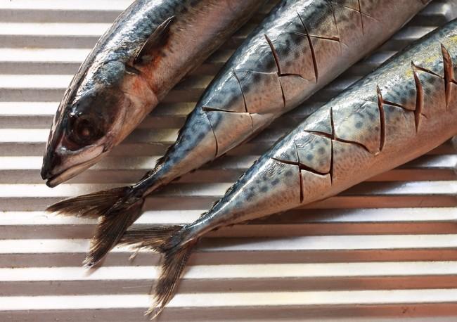 omega-3 fish oils