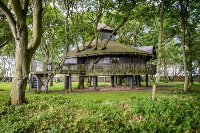 Treehouse, Ackergill