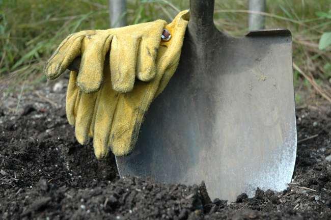 turn over soil