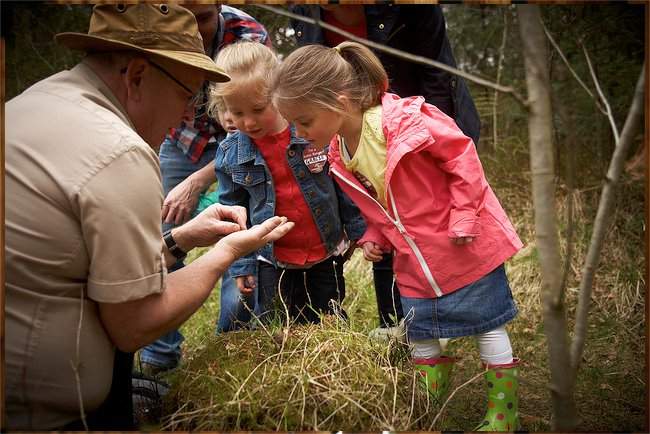 activities at Thorpe Forest