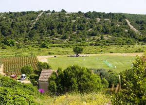 cricket field former vineyard
