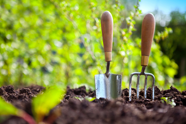Weu0027ve Asked Some Experts For Their Top Tips, So You Can Get Ahead On Your  Spring Gardening Like A Pro.