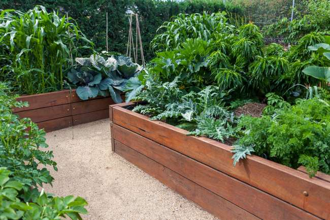 sleeper border - raised bed