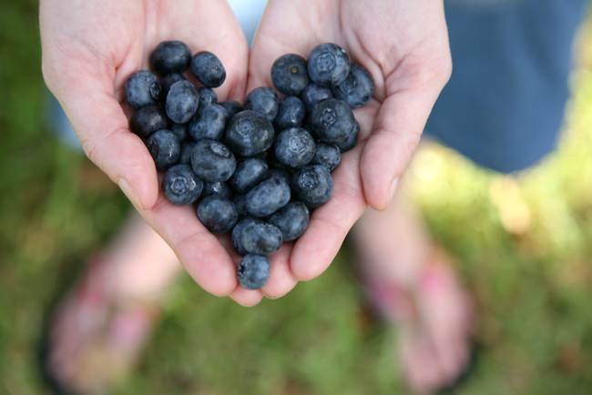 Seven steps to a healthier heart