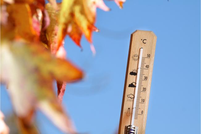 Garden thermometer