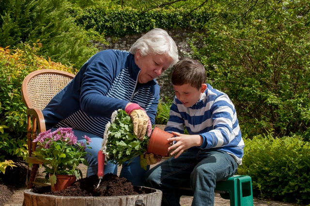 Top tips to help your garden Spring into life