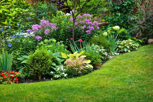 10 golden rules for gardening success