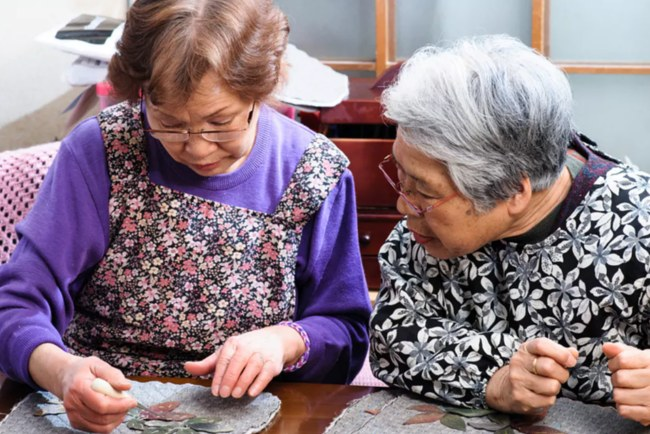 Social Care Japanese style