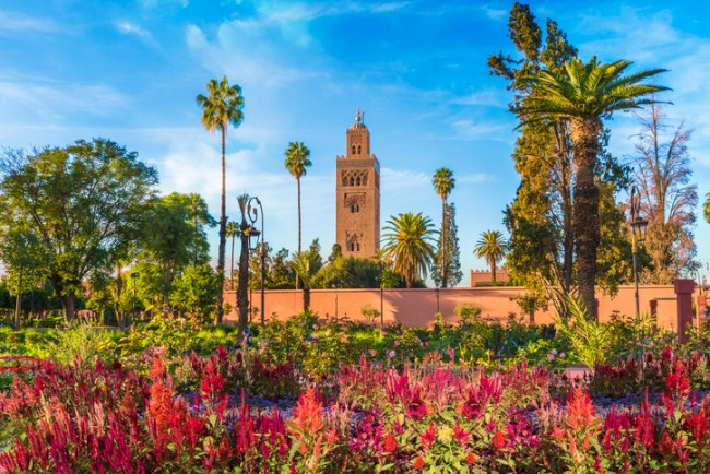 Koutoubia Mosque and gardens Marrakech