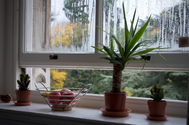 ventilate to alleviate condensation